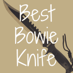 What's the Best Bowie Knife for Survival?