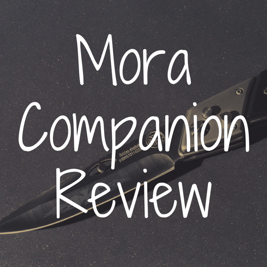 Mora Companion review