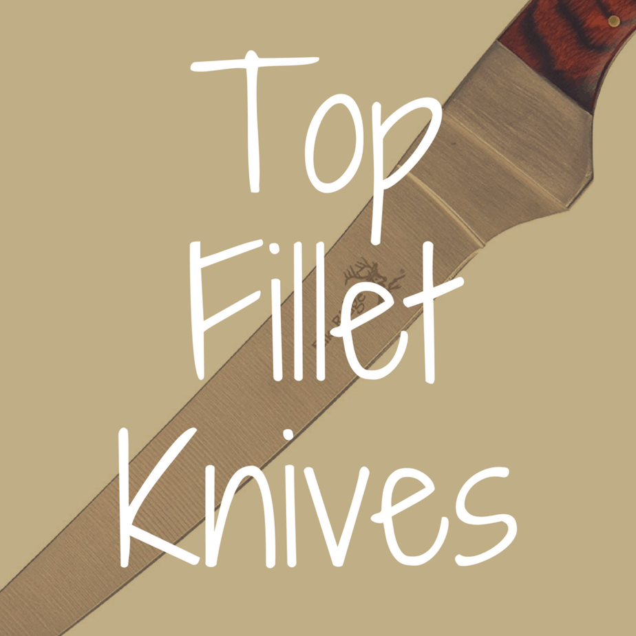 What Are the Best Fillet Knives?